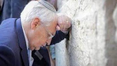 Photo of ديفيد فريدمان.  الذراع المثير للجدل لترامب والمدافع عن إسرائيل